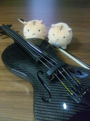 Violinp_p